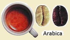 arabika2